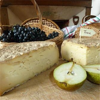 Come produrre formaggio e toma in casa