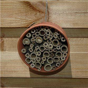 Casetta per api solitarie e bombi